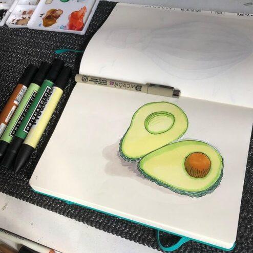 Avocats, encre et crayons de feutre