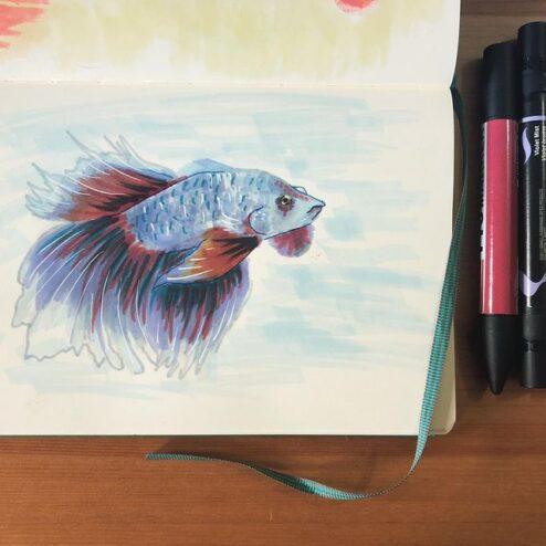 Poisson, encre et crayons de feutre